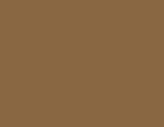 Buy Berger 900 Ml Weather Coat Smooth Exterior Paint Brown Best Prices Industrybuying